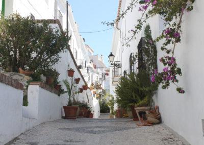 R19 - Gaden Terrase de Avila