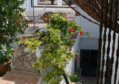 R11 - Patio og have.