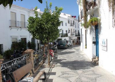 R37 - Gaden Calle Real