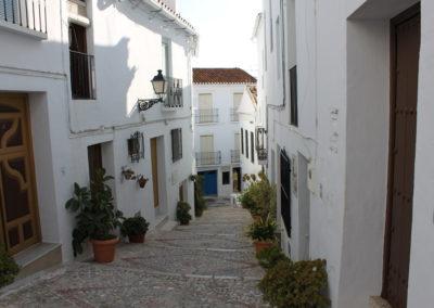R343 - Gaden Calle Zacatin