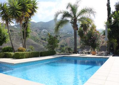 G55 - Lækker pool omgivet af palmer og have.